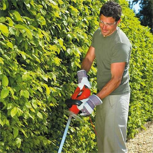 Black and Decker - 650W 60cm Hedge Trimmer - GT6026